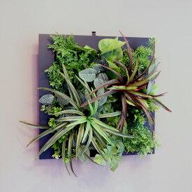 壁掛けグリーンフレーム ドラセナ ブラック(光触媒)造花・観葉植物・インテリアグリーン・フェイクグリーン・人工観葉植物
