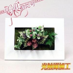 壁掛けグリーンフレームA ロング ホワイト(光触媒)造花・観葉植物・インテリアグリーン ギフト プレゼント