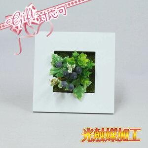 壁掛けグリーンフレームE スクエア ホワイト(光触媒)造花・観葉植物・インテリアグリーン ギフト プレゼント