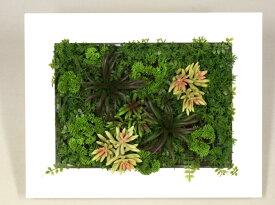 【ポイント5倍】壁掛けグリーンフレーム 多肉植物 ホワイト(光触媒)造花・観葉植物・インテリアグリーン・フェイクグリーン・人工観葉植物