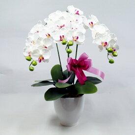 光触媒 胡蝶蘭 お祝い 造花 3本立ち 陶器鉢入り ホワイト シルクフラワー 開店祝い 新築祝い ギフト プレゼント