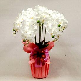 光触媒 胡蝶蘭 お祝い 造花 5本立リアル シルクフラワー 開店祝い 新築祝い ギフト プレゼント