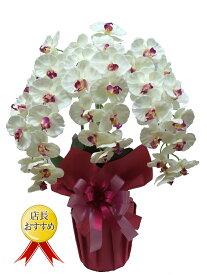 高級 胡蝶蘭 3本立 (光触媒)シルクフラワー 造花 胡蝶蘭 母の日 お祝い 新築祝い 開店祝い 敬老の日 ギフト プレゼント