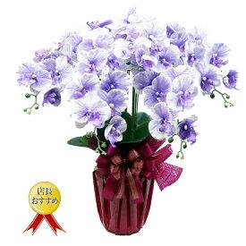 胡蝶蘭 5本立 光触媒 シルクフラワー 造花 胡蝶蘭 母の日 お祝い 新築祝い 開店祝い 敬老の日 ギフト プレゼント