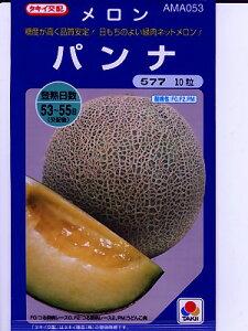 メロン種 タキイ交配パンナ  タキイ種苗のネットメロン品種です。 メロン種のことならお任せグリーンデポ