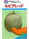 メロン種 ルピアレッド みかど協和のネットメロン品種です。 種のことならお任せグリーンデポ