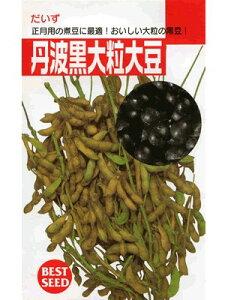 大豆種 丹波黒大粒大豆  タキイ種苗の黒豆品種です。 種のことならお任せグリーンデポ