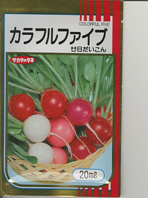 二十日ダイコン種 サカタ カラフルファイブ サカタのタネの二十日ダイコン種子です。 種のことならお任せグリーンデポ