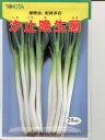ネギ種  汐止晩生葱  トキタ種苗の分けつネギ品種です。 種のことならお任せグリーンデポ