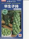 芽キャベツ種 タキイ交配 早生子持タキイ種苗の芽キャベツで品種す。 種のことならお任せグリーンデポ
