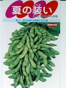 枝豆種 夏の装い サカタのタネの黒エダマメ品種です。