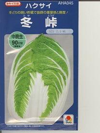 白菜の種 タキイ交配・・・冬峠・・・<タキイの白菜です。 種のことならお任せグリーンデポ>