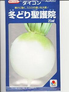 タキイ交配 冬どり聖護院大根 タキイ種苗の大根品種です。