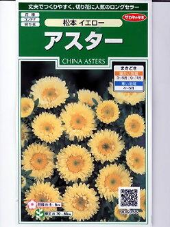 是翠菊的种Sakata Seed松本黄色<sakata的翠菊种子。假如是种的话绿色的仓库>