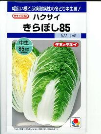 白菜種  タキイ交配 きらぼし85白菜  タキイ種苗の黄芯白菜品種です。種ことならグリーンデポ