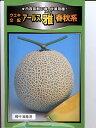 メロンの種 ウエキ交配 アールス 雅 春秋系  横浜植木の高級メロン品種です。種のことならお任せグリーンデポ