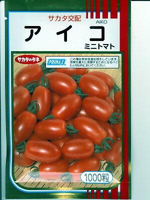 ミニトマト種 サカタ交配・・アイコ・・<サカタのタネのミニトマトです。種のことならグリーンデポ>