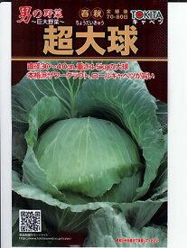 キャベツ種子 超大球   トキタ種苗のキャベツ種子です
