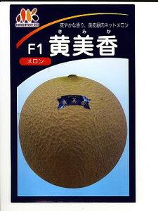 黄美香 みかど協和のメロン品種です。種の通販ならグリーンデポ
