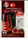 ロッソナポリタン パイオニアエコサイエンス(100粒)のミニトマト種子です