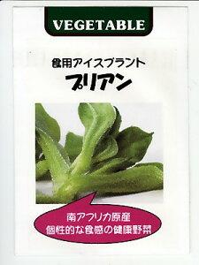 食用アイスプラント プリアン  <藤田種苗のアイスプラント種子です。種のことならお任せグリーンデポ>