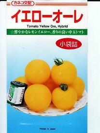 中玉トマト種 カネコ交配・・・イエローオーレ・・・<カネコの中玉トマトの種です。>