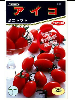 ミニトマト種 サカタ交配 アイコ  サカタのタネのミニトマト品種です。種のことならグリーンデポ