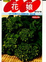 食用ナバナ種 花娘 サカタのタネの食用花菜の種です。