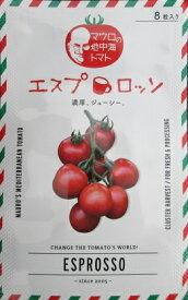 中玉トマト種 エスプロッソトマト  パイオニアエコサイエンスの中玉トマト品種です。
