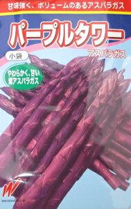 パープルタワーアスパラガス 500粒 渡辺農事のアスパラガス品種です。
