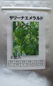 サリーナエメラルド パイオニアエコサイエンスのミニトマト品種 100粒入り