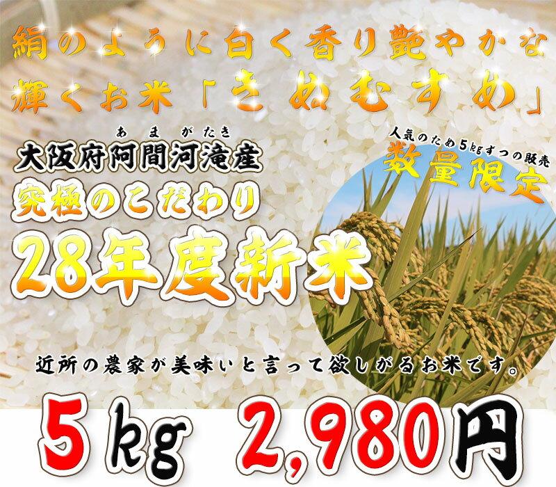 【モチモチでブランド米に負けないといわれています!今年は特にできがいい!平成28年度 新米きぬむすめ 】さらにマネのできないこだわり農法! 究極のこだわり米 すぐ売り切れます!あとわずか!大規模な大量生産ができない希少農法「きぬむすめ」5キロ