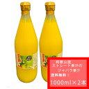 【入荷しました!】【送料無料 ゆうパックでの配送】和歌山産 ジャバラ果汁 100%ストレート 果汁 1000ml × 2…
