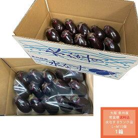 【予約販売 日付指定不可】【箱入り】【送料無料、沖縄、北海道+550円】【B判】【Bランク】15個入 大阪泉州産水ナス、自宅用にオススメ。A判と味は変わりません。フルーティーな味、生食可能。水茄子サラダ、水なす浅漬けがおすすめ。