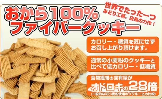 【糖質制限 低糖質】送料無料 おから100%ファイバークッキー2袋セット 低カロリー クッキー 小麦粉不使用 おからクッキー ダイエット お菓子 グルテンフリー 置き換え ロカボ ローカーボ
