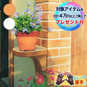 花台 TypeA / ガーデンアイテム / ディーズガーデン【おしゃれ軍手付】