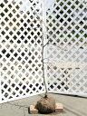 【1年間枯れ保証】【シンボルツリー落葉】シダレハナモモ赤花 1.5m露地 1本