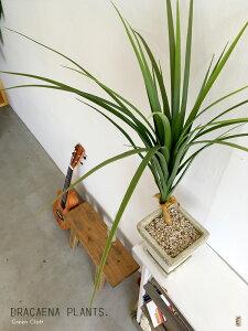 ドラセナフェイクのドラセナフェイクグリーン造花 観葉植物人工観葉植物インテリアグリーン光触媒ミッドセンチュリースタイルミニ観葉植物