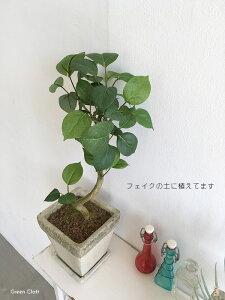 フィカスベンジャミンモチーフフェイクグリーン造花 観葉植物人工観葉植物インテリアグリーン光触媒ミッドセンチュリースタイルミニ観葉植物