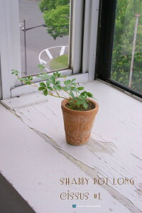 ミニシャビー鉢ロングとシサス#1フェイクの土植え造花フェイクグリーンインテリアグリーン人工観葉植物置物観葉植物北欧雑貨鉢植え