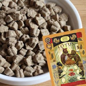 【ロータス】ロータス グレインフリー ターキーレシピ 小粒 800g