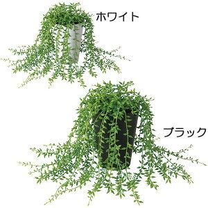 人工観葉植物 グリーンネックレス 小鉢 全高20cm 緑の鈴 ミドリノスズ 多肉植物 人工樹木 造花 フェイクグリーン インテリアグリーン オブジェ 小型グリーン ディスプレイ 装飾