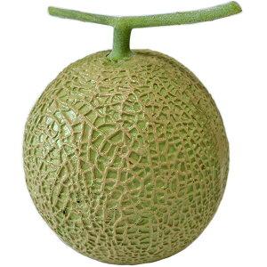 【食品サンプル】 マスク メロン 直径17cm 果物 フルーツ マスクメロン フェイクフード 食品模型 オブジェ ディスプレイ 装飾 アレンジ用