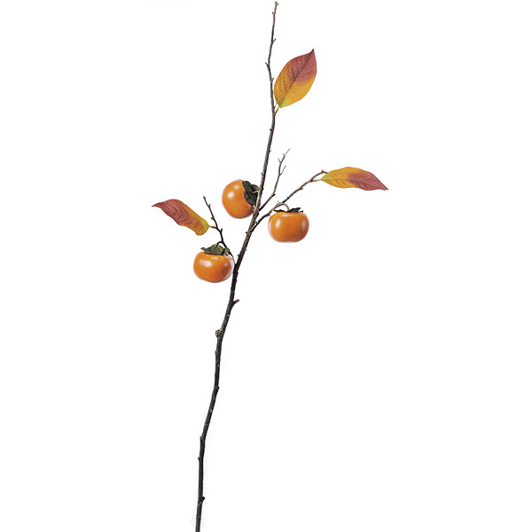 【食品サンプル】柿・全長92cm・2本セット(かき/カキ/果物/フルーツ)(フェイクフード/食品模型/オブジェ)(ディスプレイ/アレンジ/装飾/造花/花材)