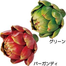 【食品サンプル】アーティチョーク・M・直径12cm・2個セット(朝鮮薊/ちょうせんあざみ/野菜)(フェイクフード/食品模型/オブジェ)(ディスプレイ/アレンジ)