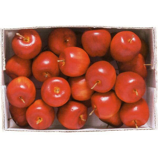 【食品サンプル】アメリカン・アップル・ピック・全長13cm・24個セット(1箱24個)(リンゴ/林檎/りんご/果物/フルーツ)(フェイクフード/アレンジ/花材)