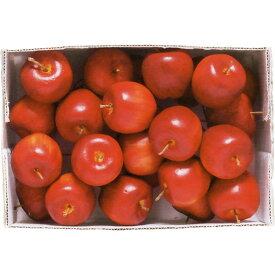 【食品サンプル】 アメリカン アップル ピック 全長13cm 24個セット 1箱24個 リンゴ 林檎 りんご 果物 フルーツ フェイクフード アレンジ 花材