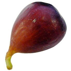 【食品サンプル】 イチジク 全長7cm 4個セット いちじく 無花果 果物 フルーツ フェイクフード 食品模型 オブジェ ディスプレイ アレンジ 装飾 花材
