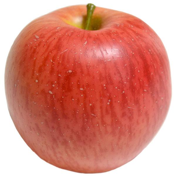 【食品サンプル】フジ・全長8.5cm・5個セット(リンゴ/林檎/りんご/アップル/果物/フルーツ)(フェイクフード/食品模型/オブジェ/アレンジ/花材/装飾)