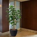 【人工植物】ボダイジュ全高1.8m(菩提樹)(フェイクグリーン/インドアグリーン/造花/人工樹木/人工観葉植物)